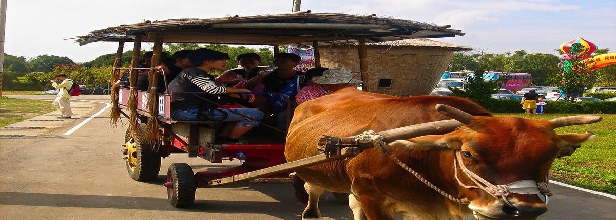 員工旅遊在地體驗農村樂活友達光電
