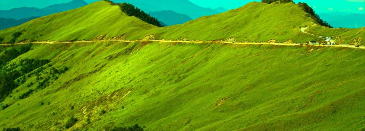|山林|國內員工旅遊/合歡山