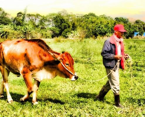|田野|國內員工旅遊公關/新竹農村體驗