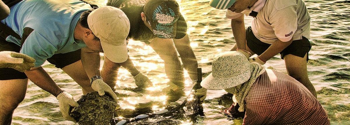 |海洋|國內員工旅遊公關/澎湖