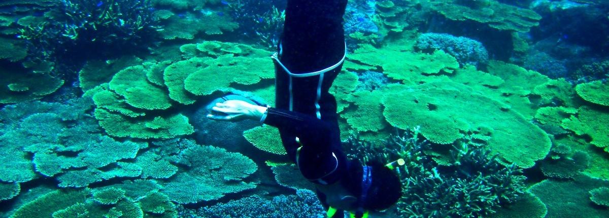 |海洋|國內員工旅遊公關/澎湖南方四島國家公園